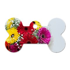 Flowers Gerbera Floral Spring Dog Tag Bone (two Sides) by Nexatart