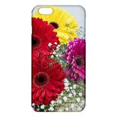 Flowers Gerbera Floral Spring Iphone 6 Plus/6s Plus Tpu Case