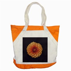 Art Beautiful Bloom Blossom Bright Accent Tote Bag by Nexatart