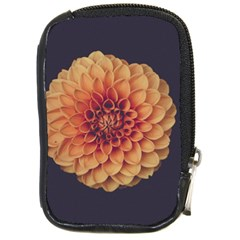 Art Beautiful Bloom Blossom Bright Compact Camera Cases by Nexatart