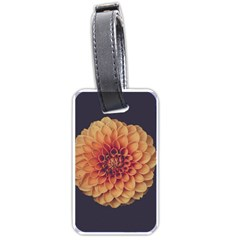 Art Beautiful Bloom Blossom Bright Luggage Tags (one Side)  by Nexatart