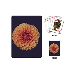 Art Beautiful Bloom Blossom Bright Playing Cards (mini)  by Nexatart