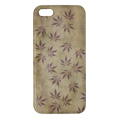 Parchment Paper Old Leaves Leaf Iphone 5s/ Se Premium Hardshell Case by Nexatart