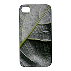 Leaf Detail Macro Of A Leaf Apple Iphone 4/4s Hardshell Case With Stand by Nexatart