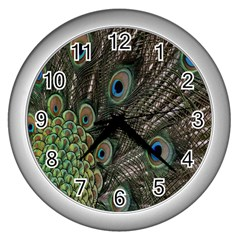 Close Up Of Peacock Feathers Wall Clocks (silver)  by Nexatart