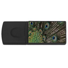 Close Up Of Peacock Feathers Usb Flash Drive Rectangular (4 Gb) by Nexatart