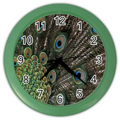 Close Up Of Peacock Feathers Color Wall Clocks by Nexatart