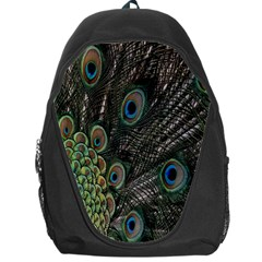 Close Up Of Peacock Feathers Backpack Bag by Nexatart