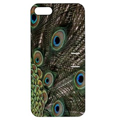 Close Up Of Peacock Feathers Apple Iphone 5 Hardshell Case With Stand by Nexatart