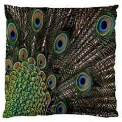 Close Up Of Peacock Feathers Large Flano Cushion Case (two Sides) by Nexatart