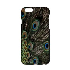 Close Up Of Peacock Feathers Apple Iphone 6/6s Hardshell Case by Nexatart