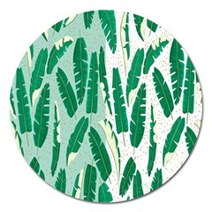 Banana Leaf Green Polka Dots Magnet 5  (round) by Mariart