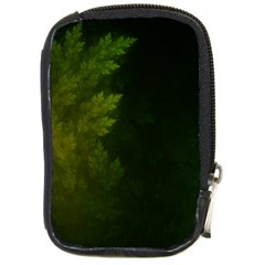 Beautiful Fractal Pines In The Misty Spring Night Compact Camera Cases by jayaprime