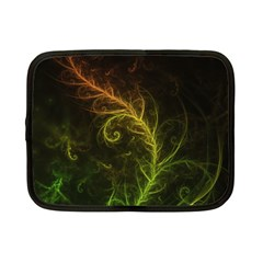 Fractal Hybrid Of Guzmania Tuti Fruitti And Ferns Netbook Case (small)  by beautifulfractals