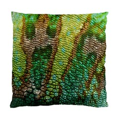 Chameleon Skin Texture Standard Cushion Case (one Side) by BangZart