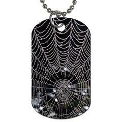 Spider Web Wallpaper 14 Dog Tag (two Sides) by BangZart