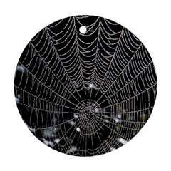 Spider Web Wallpaper 14 Round Ornament (two Sides) by BangZart
