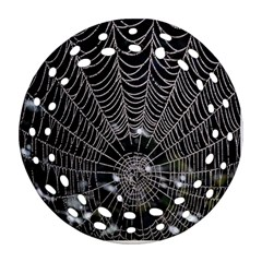 Spider Web Wallpaper 14 Round Filigree Ornament (two Sides) by BangZart