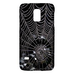 Spider Web Wallpaper 14 Galaxy S5 Mini by BangZart