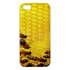 Sweden Honey Iphone 5s/ Se Premium Hardshell Case by BangZart