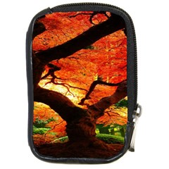 Maple Tree Nice Compact Camera Cases by BangZart