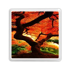 Maple Tree Nice Memory Card Reader (square)  by BangZart