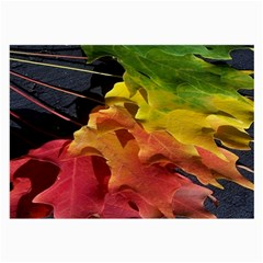 Green Yellow Red Maple Leaf Large Glasses Cloth (2 Side) by BangZart