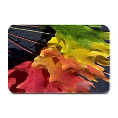 Green Yellow Red Maple Leaf Plate Mats by BangZart