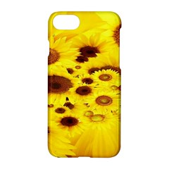 Beautiful Sunflowers Apple Iphone 7 Hardshell Case by BangZart