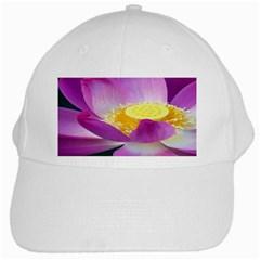 Pink Lotus Flower White Cap by BangZart