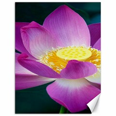 Pink Lotus Flower Canvas 18  X 24   by BangZart