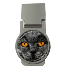 Cat Eyes Background Image Hypnosis Money Clips (round)  by BangZart