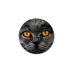 Cat Eyes Background Image Hypnosis Golf Ball Marker (10 Pack) by BangZart
