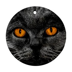 Cat Eyes Background Image Hypnosis Round Ornament (two Sides) by BangZart