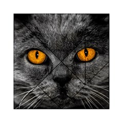 Cat Eyes Background Image Hypnosis Acrylic Tangram Puzzle (6  X 6 ) by BangZart
