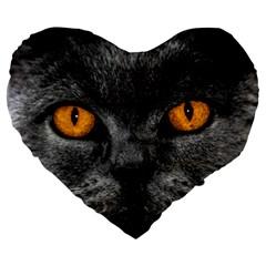 Cat Eyes Background Image Hypnosis Large 19  Premium Heart Shape Cushions by BangZart