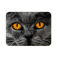 Cat Eyes Background Image Hypnosis Double Sided Flano Blanket (mini)  by BangZart