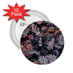 Leaf Leaves Autumn Fall Brown 2 25  Buttons (10 Pack)  by BangZart