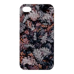 Leaf Leaves Autumn Fall Brown Apple Iphone 4/4s Hardshell Case by BangZart