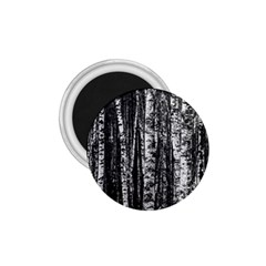 Birch Forest Trees Wood Natural 1 75  Magnets by BangZart