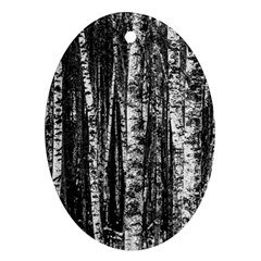 Birch Forest Trees Wood Natural Ornament (oval) by BangZart
