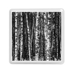 Birch Forest Trees Wood Natural Memory Card Reader (square)  by BangZart