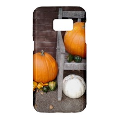 Pumpkins And Gourds Samsung Galaxy S7 Hardshell Case  by TailWags