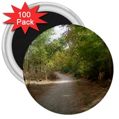 Path 1 3  Magnets (100 Pack) by TailWags