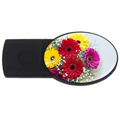 Flowers Gerbera Floral Spring Usb Flash Drive Oval (2 Gb) by BangZart