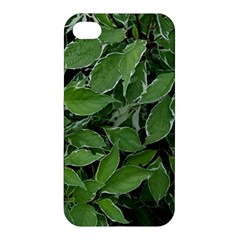 Texture Leaves Light Sun Green Apple Iphone 4/4s Hardshell Case by BangZart
