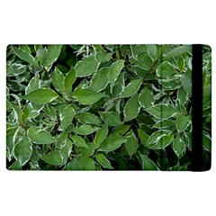 Texture Leaves Light Sun Green Apple Ipad 2 Flip Case by BangZart