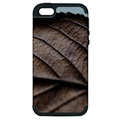 Leaf Veins Nerves Macro Closeup Apple Iphone 5 Hardshell Case (pc+silicone) by BangZart