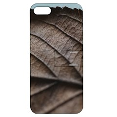 Leaf Veins Nerves Macro Closeup Apple Iphone 5 Hardshell Case With Stand by BangZart