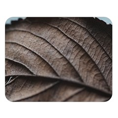 Leaf Veins Nerves Macro Closeup Double Sided Flano Blanket (large)  by BangZart